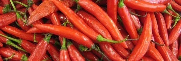 10 chilli peppers in order of hotness
